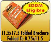 11.5x17.5 Folded Brochure - Direct Mail | Cheapest EDDM Printing
