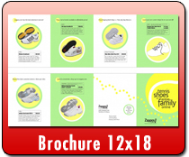 Brochure 12 x 18 - Direct Mail | Cheapest EDDM Printing