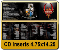 CD Inserts 4.75 x 14.25 - CD/DVD | Cheapest EDDM Printing
