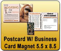 Eddm postcard brochures yard signs 24x24 yard signs magnetic postcard wbusiness card magnet 55 x 85 yard signs magnetic cards reheart Image collections